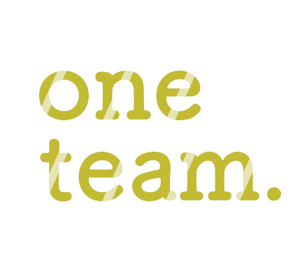 oneteam_mini